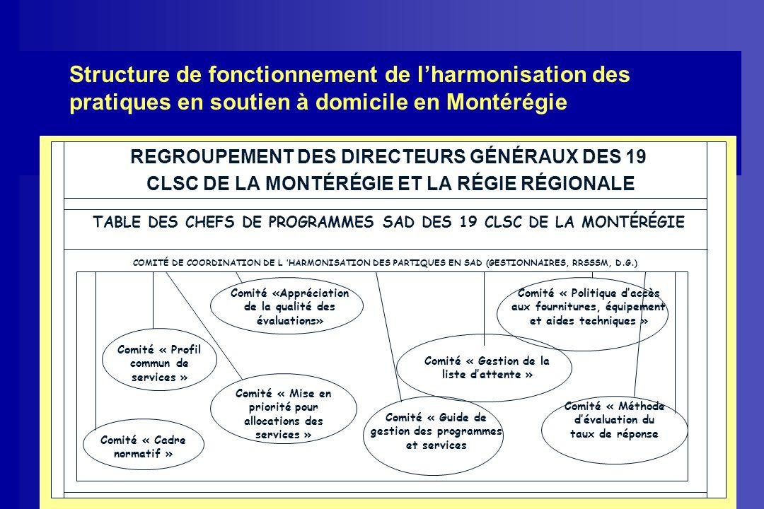 Structure de fonctionnement de lharmonisation des pratiques en soutien à domicile en Montérégie REGROUPEMENT DES DIRECTEURS GÉNÉRAUX DES 19 CLSC DE LA