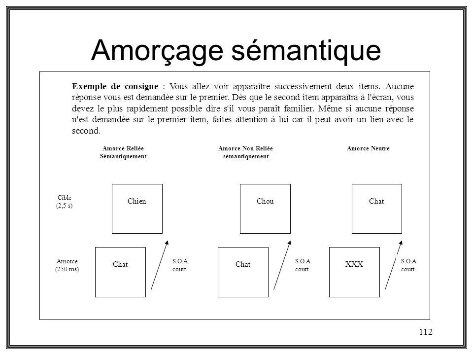 112 Amorçage sémantique Exemple de consigne : Vous allez voir apparaître successivement deux items. Aucune réponse vous est demandée sur le premier. D