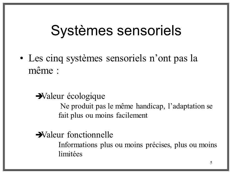 5 Systèmes sensoriels Les cinq systèmes sensoriels nont pas la même : Valeur écologique Ne produit pas le même handicap, ladaptation se fait plus ou m