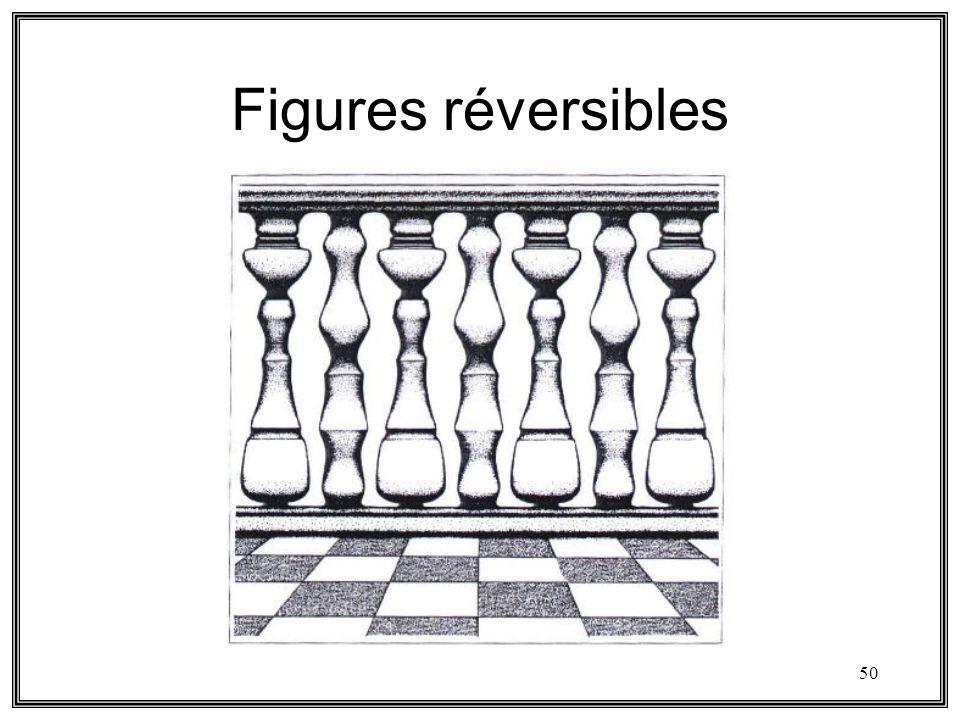 50 Figures réversibles