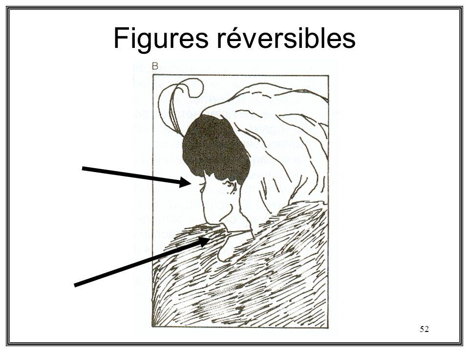 52 Figures réversibles