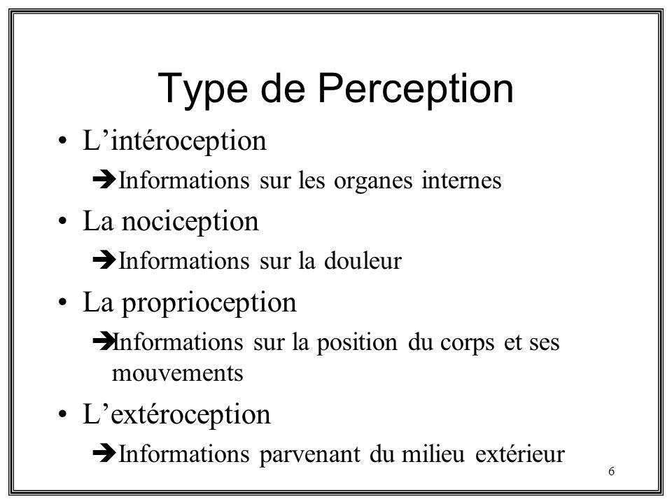 6 Type de Perception Lintéroception Informations sur les organes internes La nociception Informations sur la douleur La proprioception Informations su