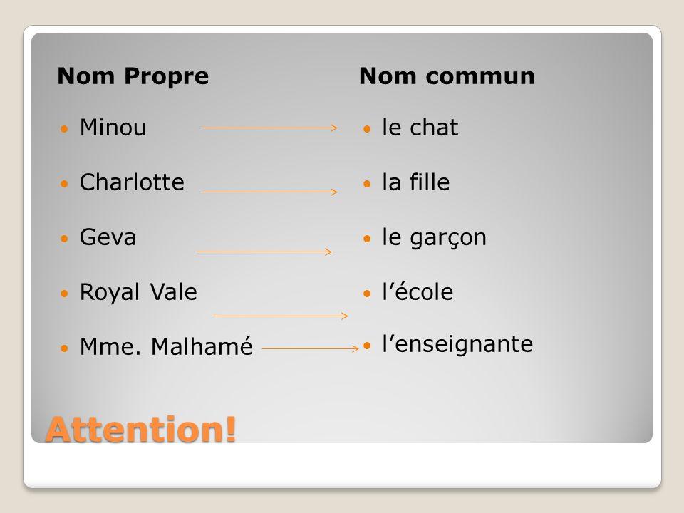 Attention! Nom PropreNom commun Minou Charlotte Geva Royal Vale Mme. Malhamé le chat la fille le garçon lécole lenseignante