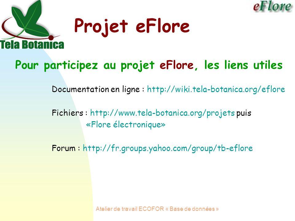 Atelier de travail ECOFOR « Base de données » Projet eFlore Pour participez au projet eFlore, les liens utiles Documentation en ligne : http://wiki.tela-botanica.org/eflore Fichiers : http://www.tela-botanica.org/projets puis «Flore électronique» Forum : http://fr.groups.yahoo.com/group/tb-eflore