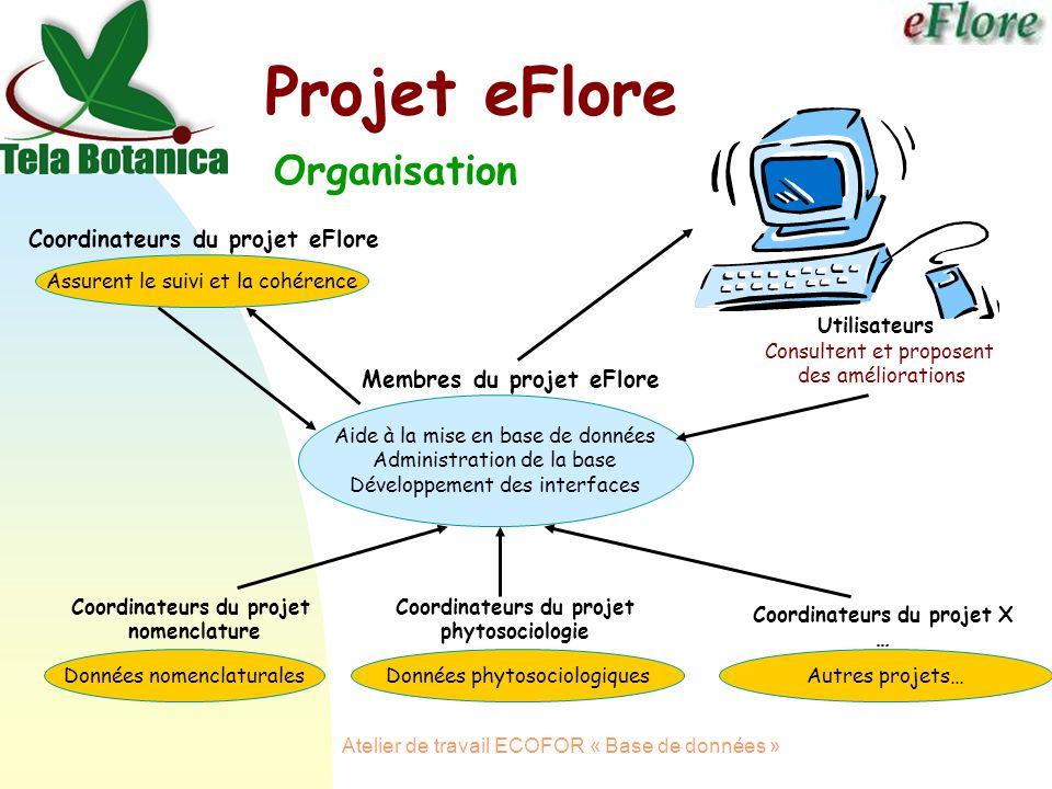 Atelier de travail ECOFOR « Base de données » Projet eFlore Organisation Coordinateurs du projet nomenclature Membres du projet eFlore Coordinateurs du projet phytosociologie Aide à la mise en base de données Administration de la base Développement des interfaces Données nomenclaturalesDonnées phytosociologiques Utilisateurs Consultent et proposent des améliorations Coordinateurs du projet X … Autres projets… Coordinateurs du projet eFlore Assurent le suivi et la cohérence
