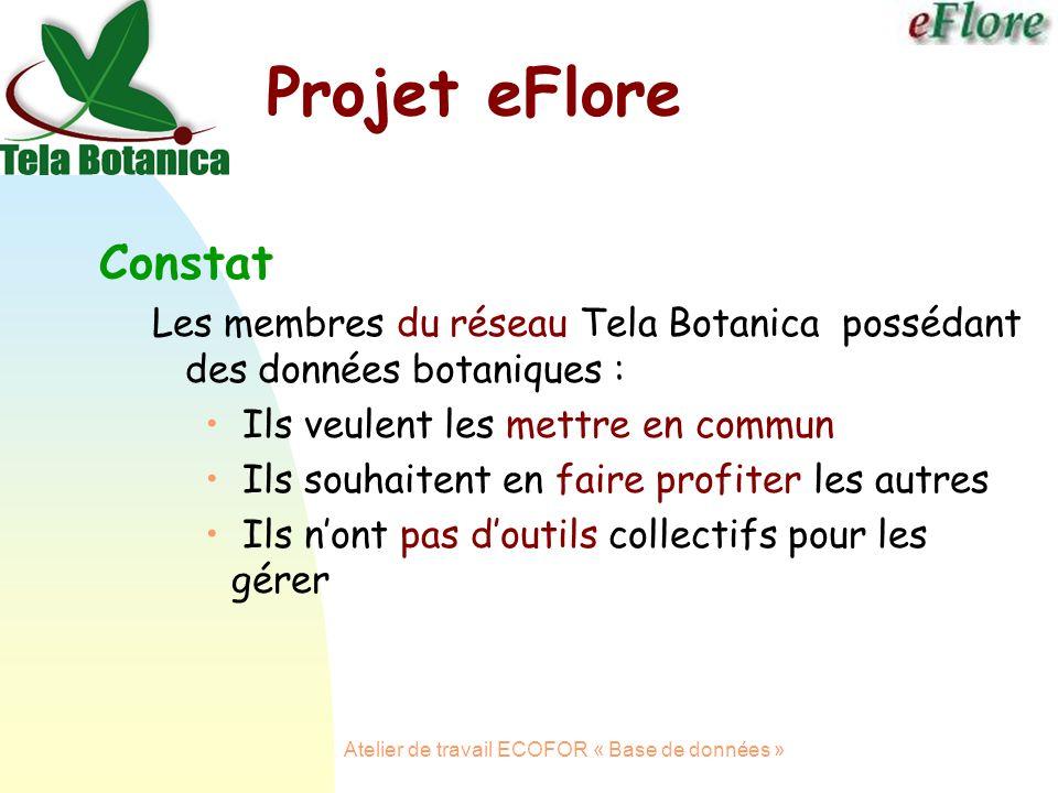 Atelier de travail ECOFOR « Base de données » Projet eFlore Constat Les membres du réseau Tela Botanica possédant des données botaniques : Ils veulent les mettre en commun Ils souhaitent en faire profiter les autres Ils nont pas doutils collectifs pour les gérer