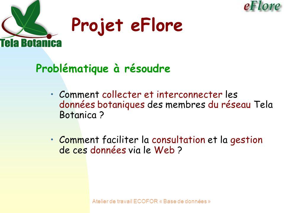 Atelier de travail ECOFOR « Base de données » Projet eFlore Problématique à résoudre Comment collecter et interconnecter les données botaniques des membres du réseau Tela Botanica .