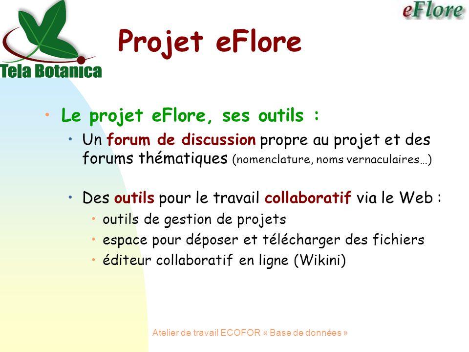Atelier de travail ECOFOR « Base de données » Le projet eFlore, ses outils : Un forum de discussion propre au projet et des forums thématiques (nomenclature, noms vernaculaires…) Des outils pour le travail collaboratif via le Web : outils de gestion de projets espace pour déposer et télécharger des fichiers éditeur collaboratif en ligne (Wikini) Projet eFlore