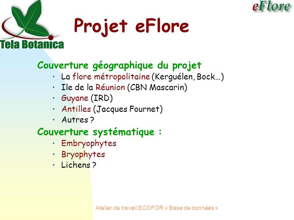 Atelier de travail ECOFOR « Base de données » Projet eFlore Couverture géographique du projet La flore métropolitaine (Kerguélen, Bock…) Ile de la Réunion (CBN Mascarin) Guyane (IRD) Antilles (Jacques Fournet) Autres .