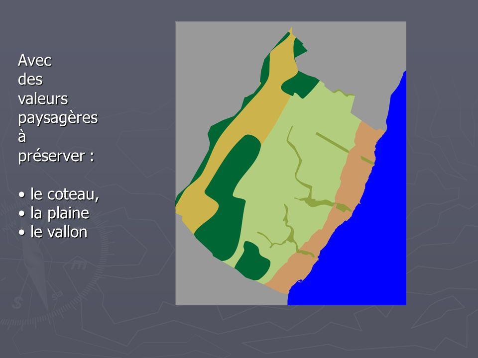 Avecdes valeurs paysagères à préserver : le coteau, le coteau, la plaine la plaine le vallon le vallon