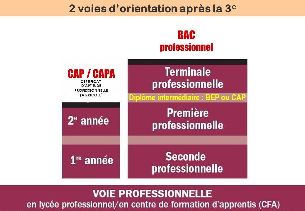 BAC professionnel 2 voies dorientation après la 3 e Diplôme intermédiaire : BEP ou CAP CAP / CAPA CERTIFICAT DAPTITUDE PROFESSIONNELLE (AGRICOLE)