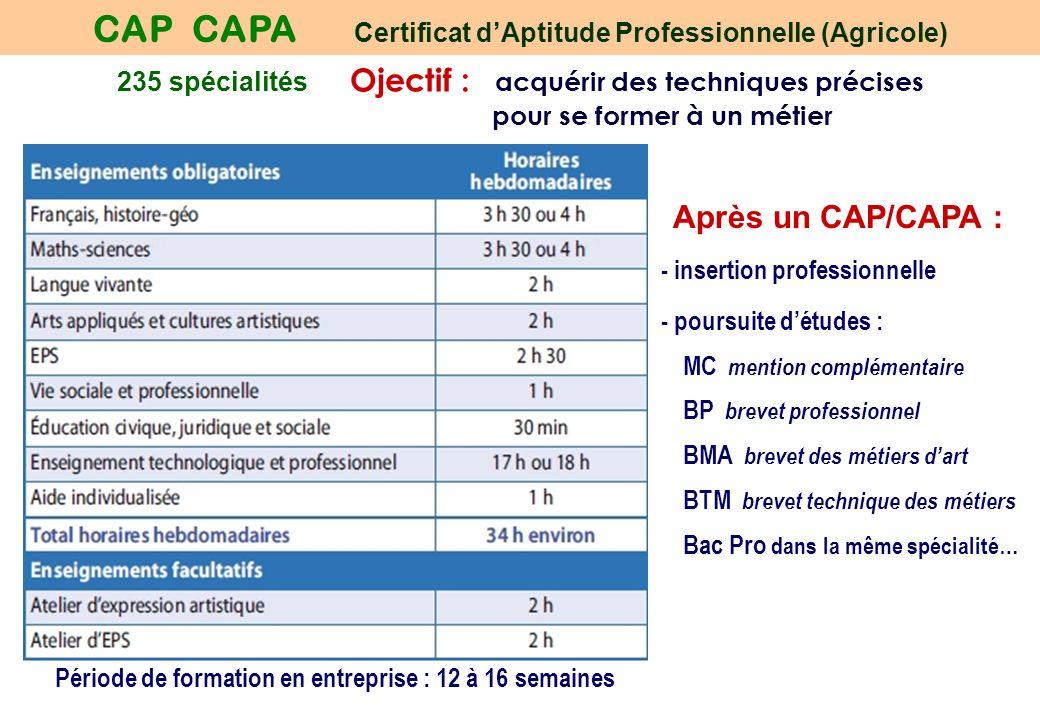 235 spécialités Ojectif : acquérir des techniques précises pour se former à un métier CAP CAPA Certificat dAptitude Professionnelle (Agricole) Période