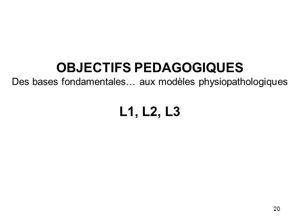 20 OBJECTIFS PEDAGOGIQUES Des bases fondamentales… aux modèles physiopathologiques L1, L2, L3