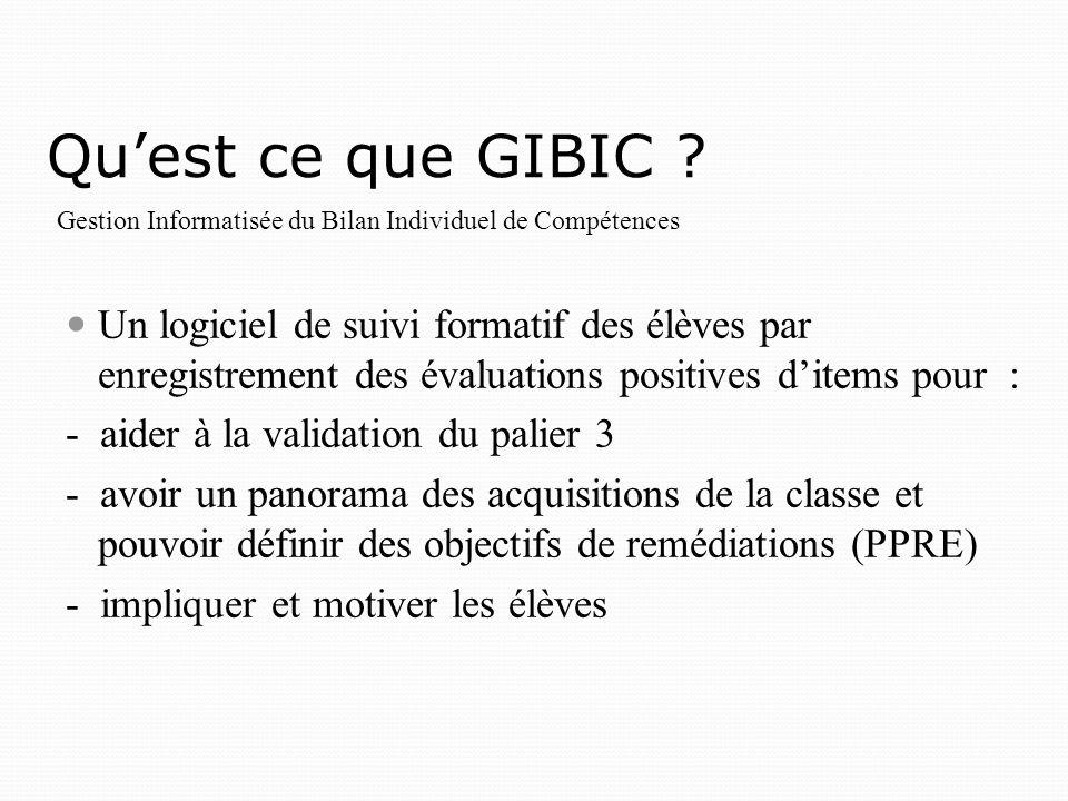 Quest ce que GIBIC .