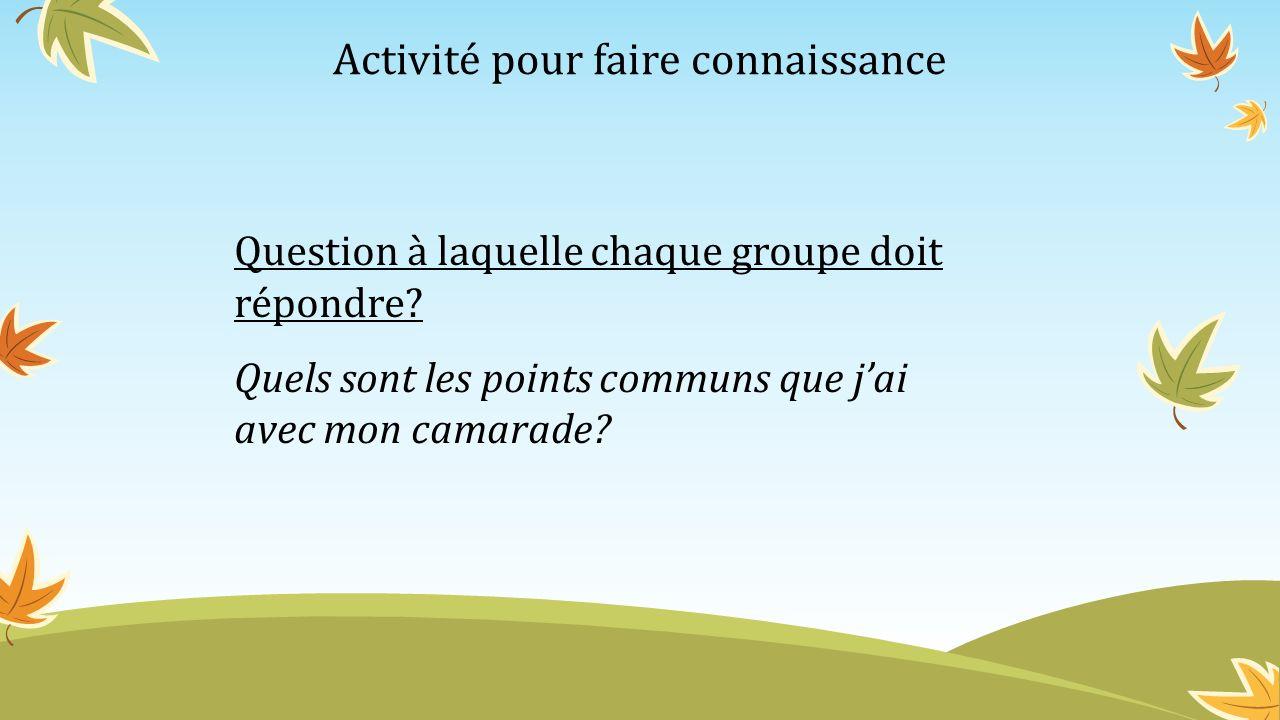 Activité pour faire connaissance Question à laquelle chaque groupe doit répondre? Quels sont les points communs que jai avec mon camarade?