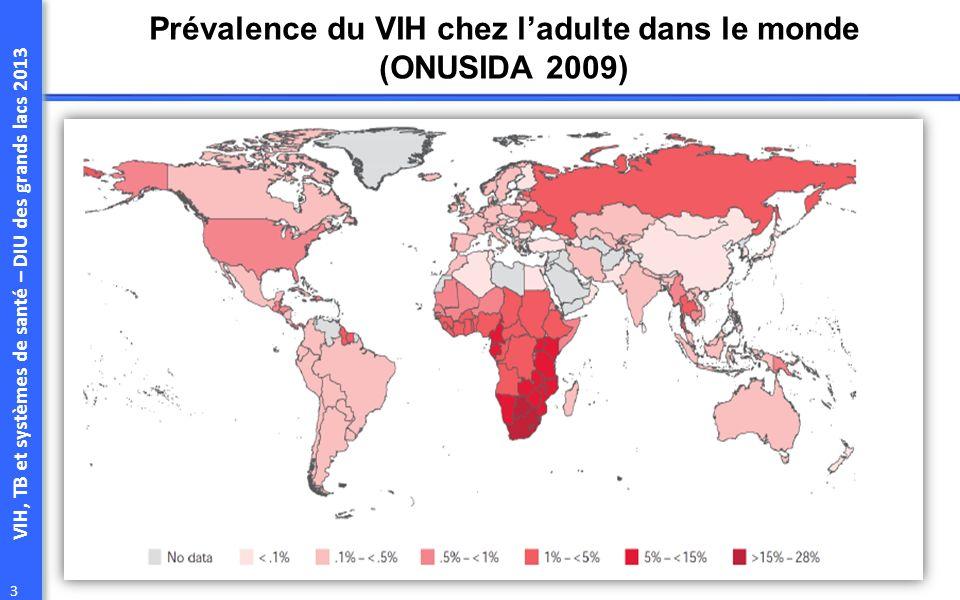 VIH, TB et systèmes de santé – DIU des grands lacs 2013 3 Prévalence du VIH chez ladulte dans le monde (ONUSIDA 2009)