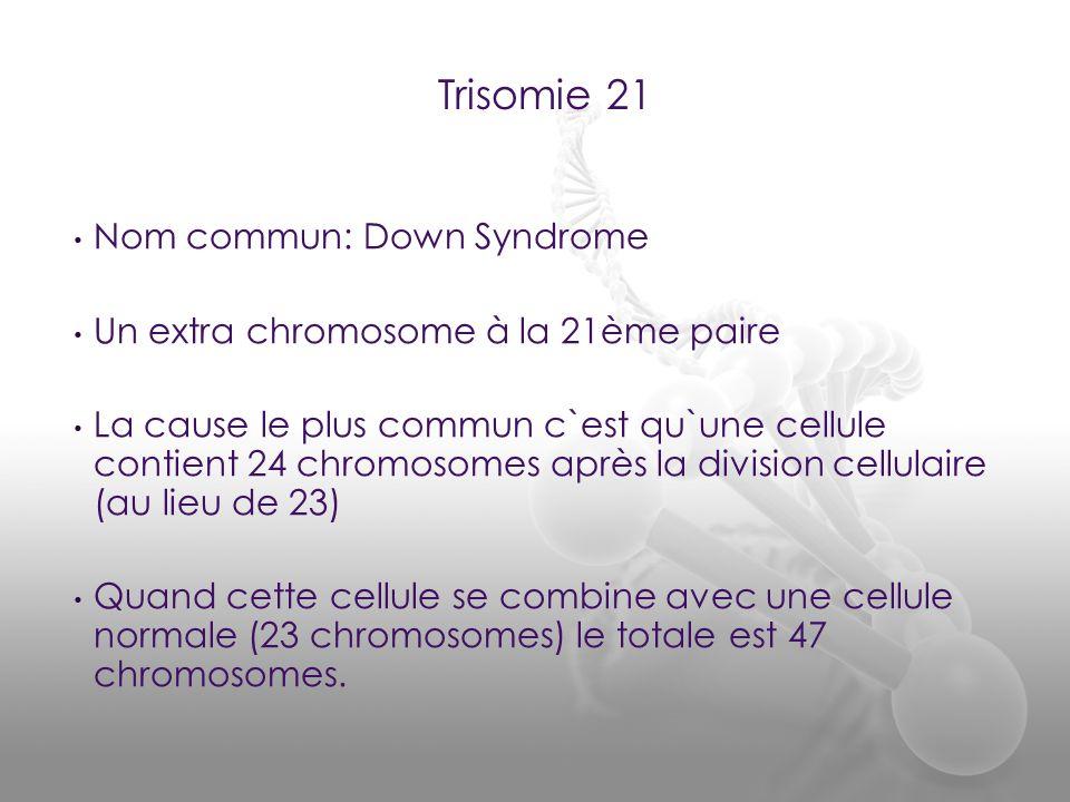 Nom commun: Down Syndrome Un extra chromosome à la 21ème paire La cause le plus commun c`est qu`une cellule contient 24 chromosomes après la division