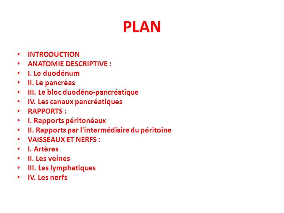 PLAN INTRODUCTION ANATOMIE DESCRIPTIVE : I. Le duodénum II. Le pancréas III. Le bloc duodéno-pancréatique IV. Les canaux pancréatiques RAPPORTS : I. R