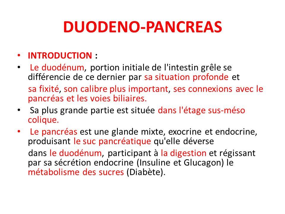 DUODENO-PANCREAS INTRODUCTION : Le duodénum, portion initiale de l'intestin grêle se différencie de ce dernier par sa situation profonde et sa fixité,