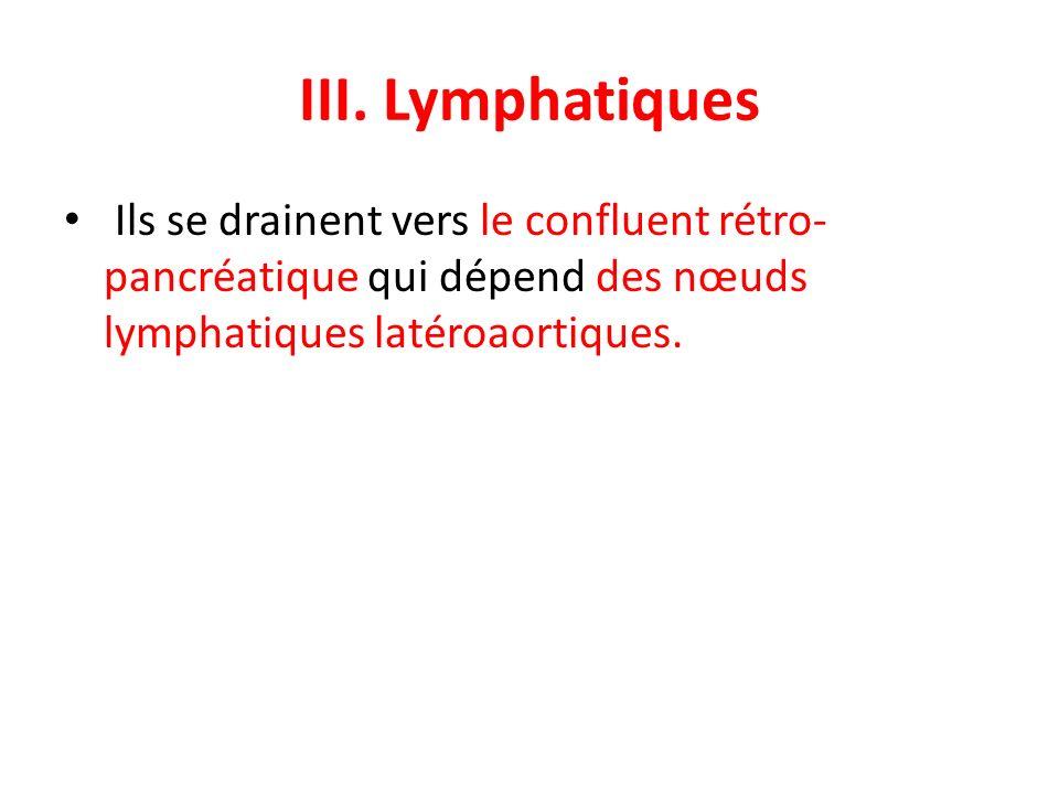 III. Lymphatiques Ils se drainent vers le confluent rétro- pancréatique qui dépend des nœuds lymphatiques latéroaortiques.