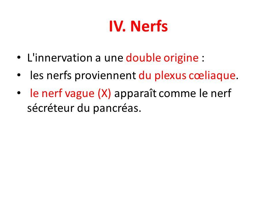 IV. Nerfs L'innervation a une double origine : les nerfs proviennent du plexus cœliaque. le nerf vague (X) apparaît comme le nerf sécréteur du pancréa