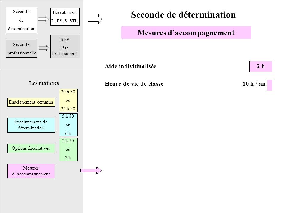 Les matières Seconde de détermination Mesures daccompagnement Aide individualisée 2 h Heure de vie de classe 10 h / an Seconde de détermination Baccalauréat L, ES, S, STI, Seconde professionnelle BEP Bac Professionnel Enseignement commun Enseignement de détermination Options facultatives Mesures d accompagnement 20 h 30 ou 22 h 30 5 h 30 ou 6 h 2 h 30 ou 3 h