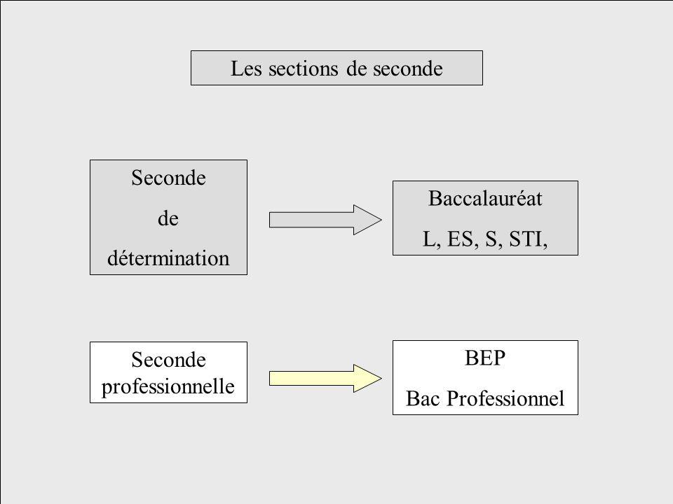 Les sections de seconde Seconde de détermination Baccalauréat L, ES, S, STI, Seconde professionnelle BEP Bac Professionnel