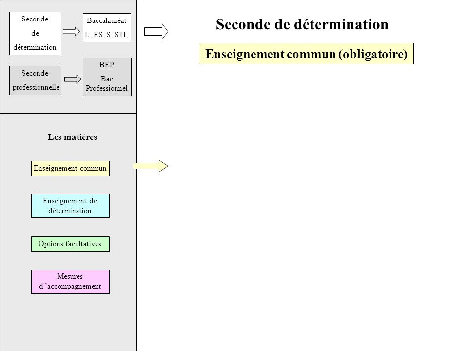Seconde de détermination Enseignement commun (obligatoire) Enseignement commun Enseignement de détermination Options facultatives Mesures d accompagne