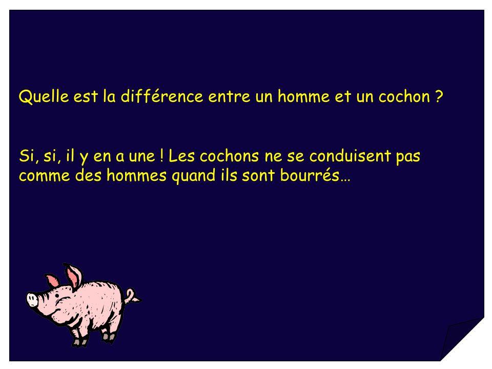 Quelle est la différence entre un homme et un cochon ? Si, si, il y en a une ! Les cochons ne se conduisent pas comme des hommes quand ils sont bourré