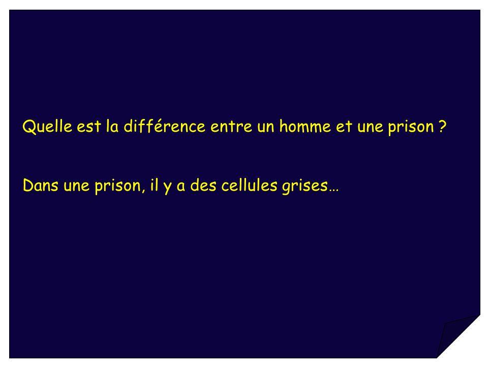 Quelle est la différence entre un homme et une prison ? Dans une prison, il y a des cellules grises…