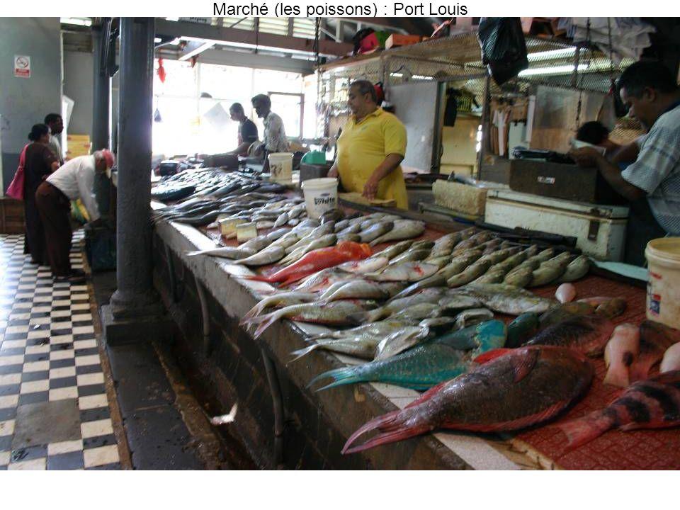 Marché (les poissons) : Port Louis