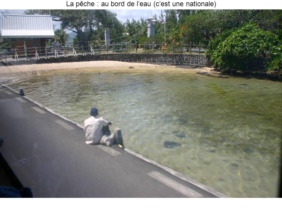 La pêche : au bord de leau (cest une nationale)