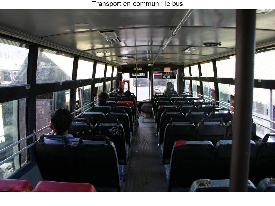 Transport en commun : le bus