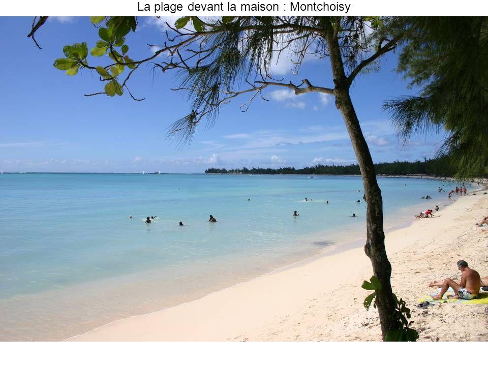 La plage devant la maison : Montchoisy