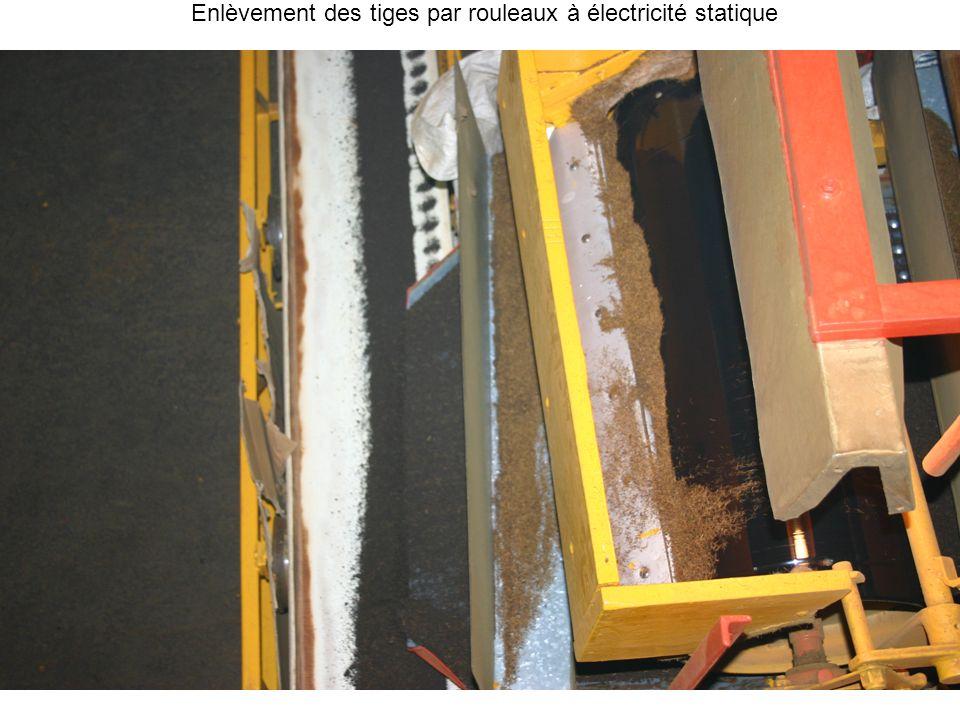 Enlèvement des tiges par rouleaux à électricité statique