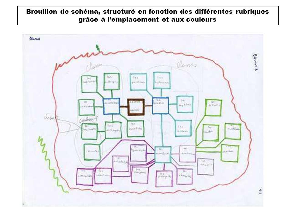 Brouillon de schéma, structuré en fonction des différentes rubriques grâce à lemplacement et aux couleurs