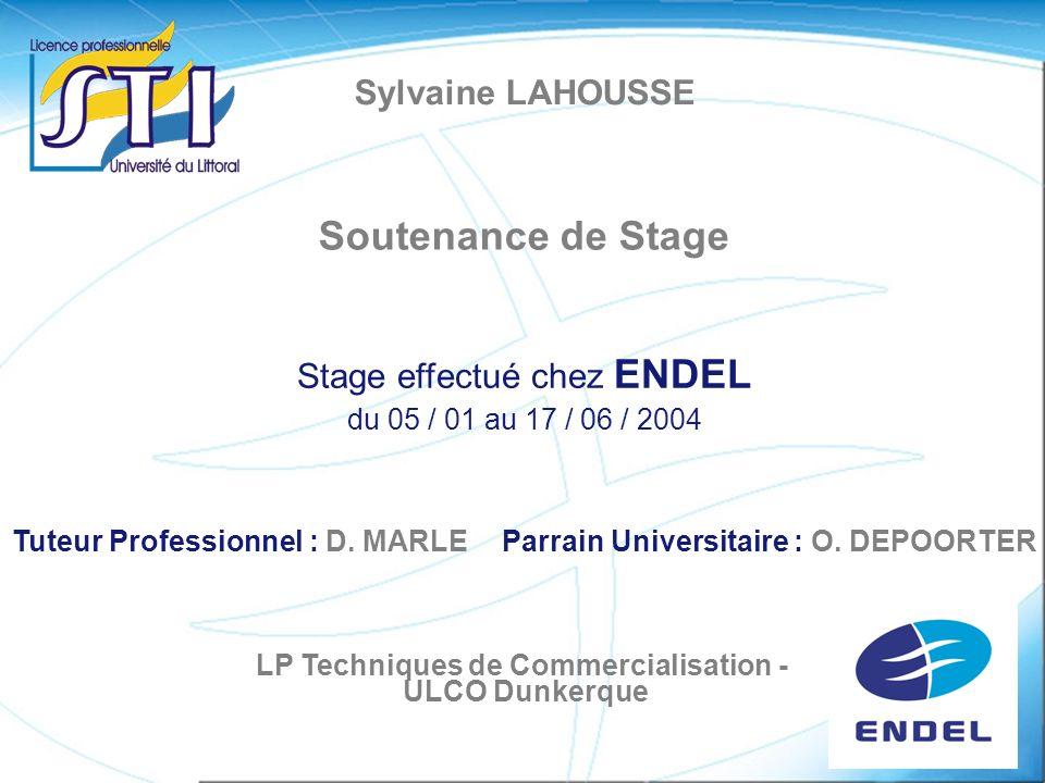 Sylvaine LAHOUSSE Soutenance de Stage Stage effectué chez ENDEL du 05 / 01 au 17 / 06 / 2004 Tuteur Professionnel : D. MARLEParrain Universitaire : O.