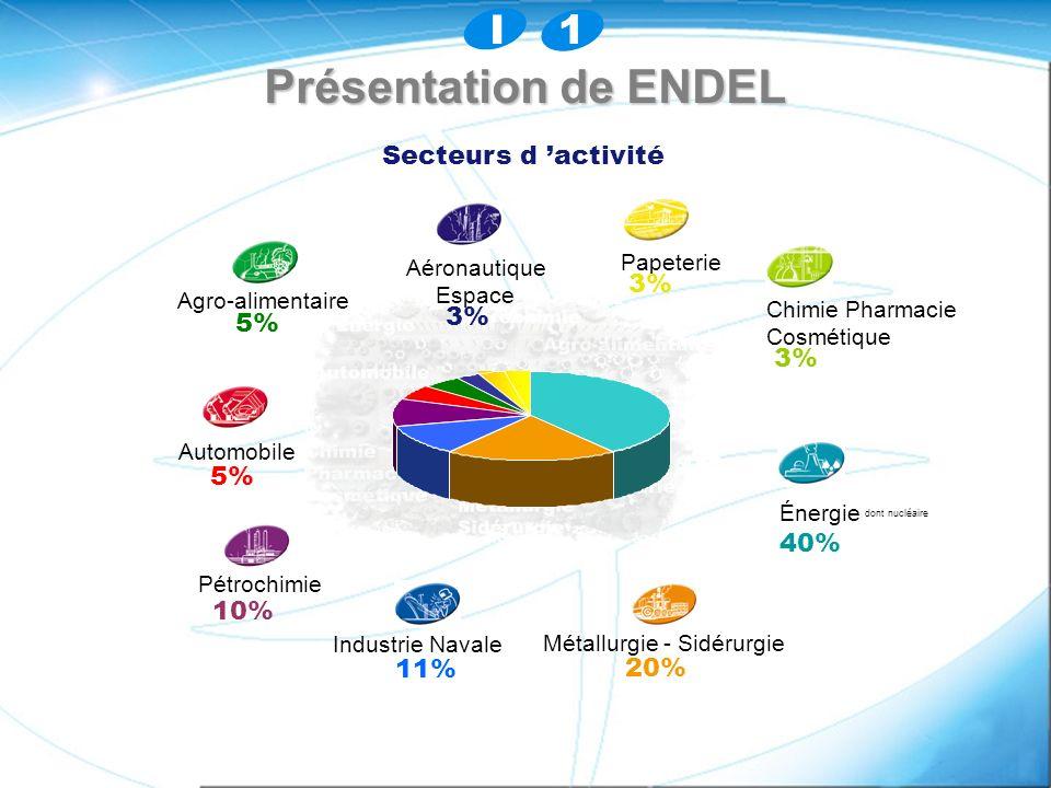 dont nucléaire 11% Chimie Pharmacie Énergie 40% Pétrochimie 10% Métallurgie - Sidérurgie 20% Cosmétique 3% Papeterie 3% Agro-alimentaire 5% Aéronautiq