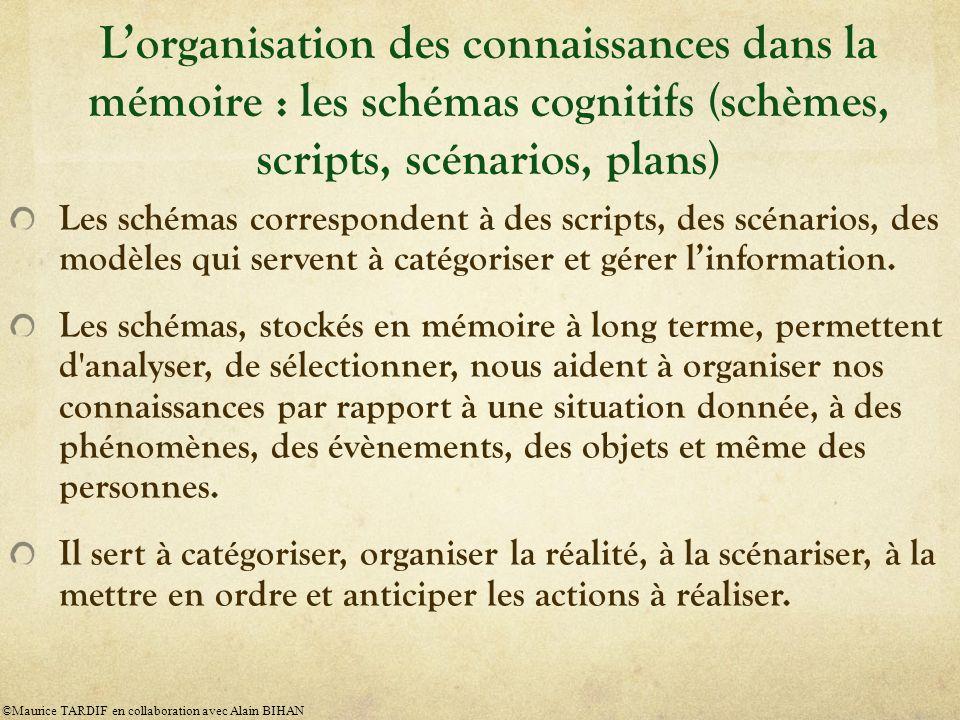 Lorganisation des connaissances dans la mémoire : les schémas cognitifs (schèmes, scripts, scénarios, plans) Les schémas correspondent à des scripts, des scénarios, des modèles qui servent à catégoriser et gérer linformation.
