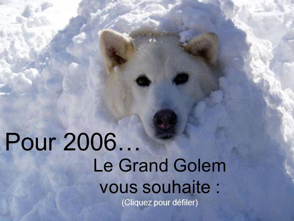 Pour 2006… Le Grand Golem vous souhaite : (Cliquez pour défiler)