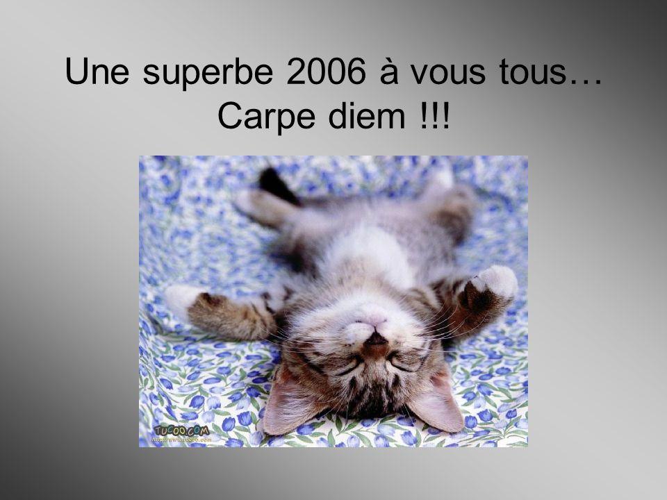 Une superbe 2006 à vous tous… Carpe diem !!!