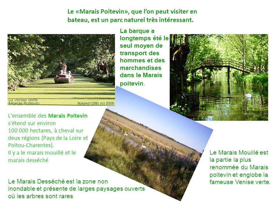 Le «Marais Poitevin», que lon peut visiter en bateau, est un parc naturel très intéressant.