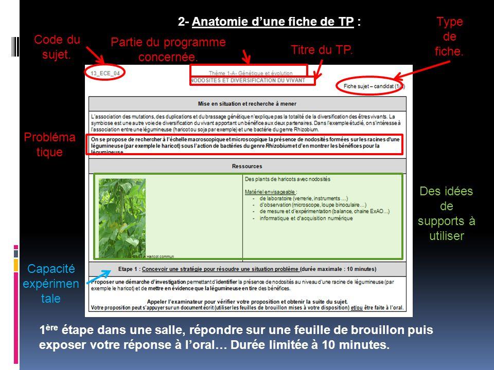 2- Anatomie dune fiche de TP : Code du sujet. Partie du programme concernée. Titre du TP. Probléma tique Des idées de supports à utiliser Type de fich