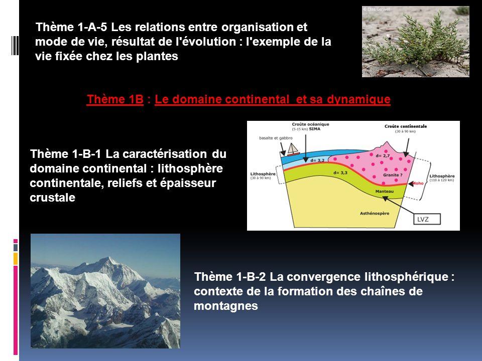 Thème 1B : Le domaine continental et sa dynamique Thème 1-A-5 Les relations entre organisation et mode de vie, résultat de l'évolution : l'exemple de