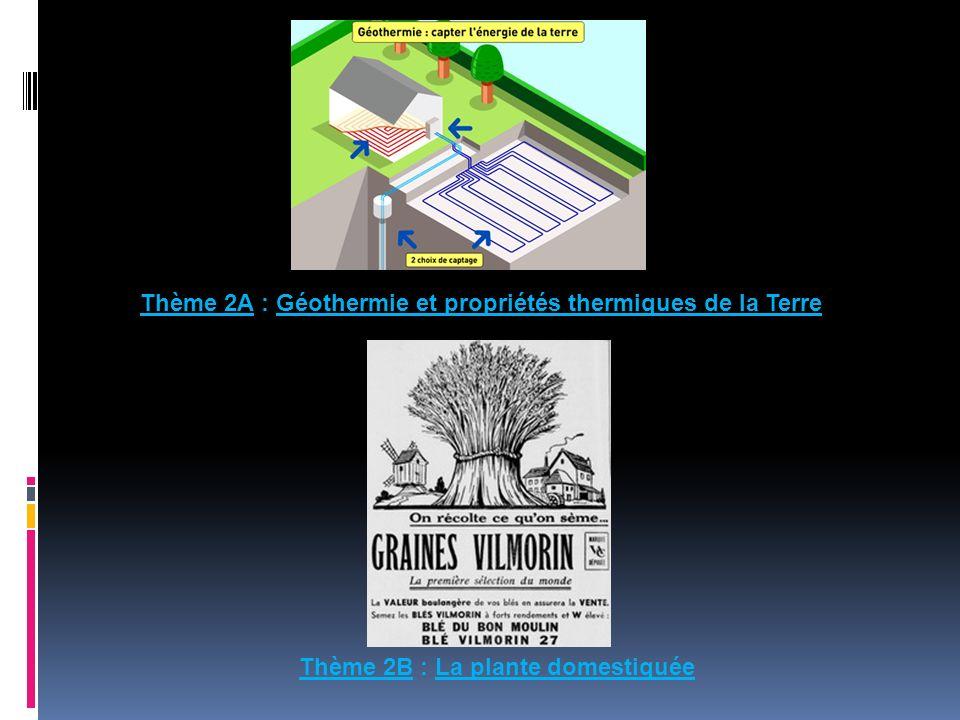 Thème 2A : Géothermie et propriétés thermiques de la Terre Thème 2B : La plante domestiquée