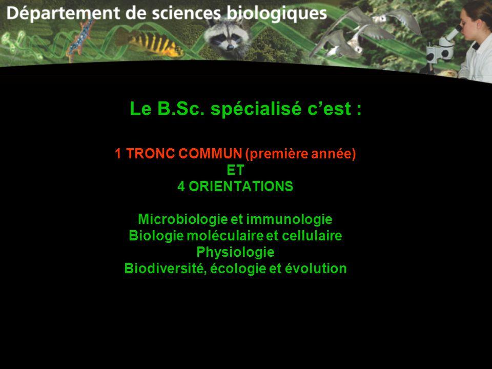 Le B.Sc. spécialisé cest : 1 TRONC COMMUN (première année) ET 4 ORIENTATIONS Microbiologie et immunologie Biologie moléculaire et cellulaire Physiolog