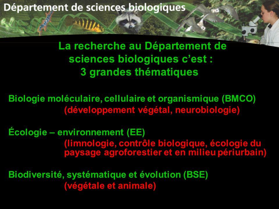 La recherche au Département de sciences biologiques cest : 3 grandes thématiques Biologie moléculaire, cellulaire et organismique (BMCO) (développemen