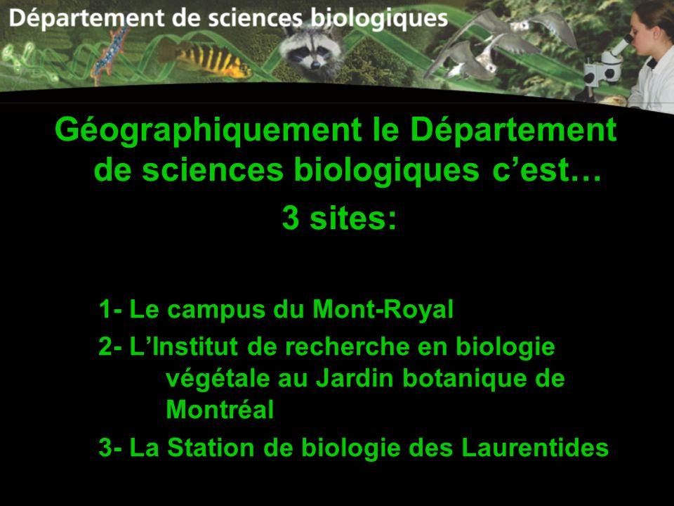 Géographiquement le Département de sciences biologiques cest… 3 sites: 1- Le campus du Mont-Royal 2- LInstitut de recherche en biologie végétale au Ja