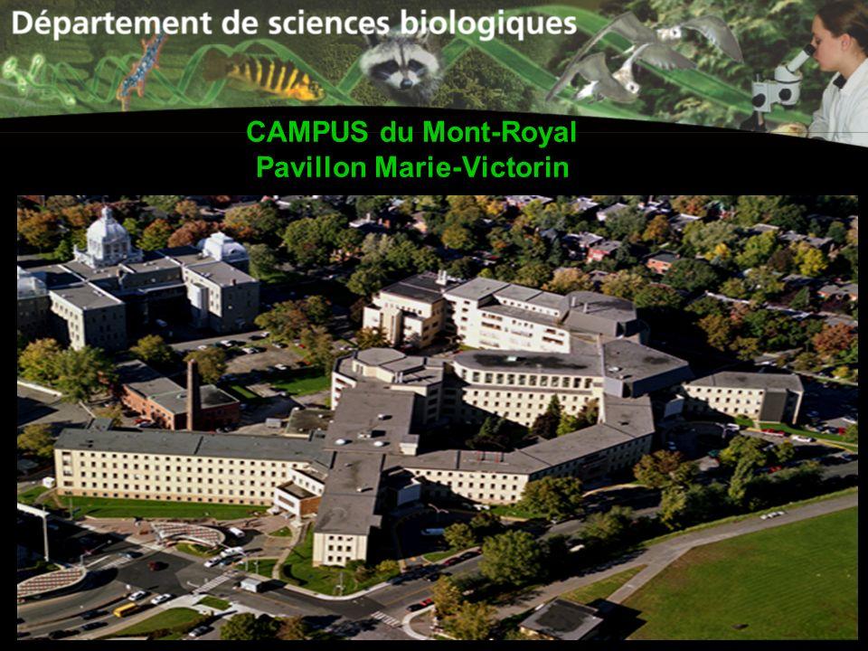CAMPUS du Mont-Royal Pavillon Marie-Victorin
