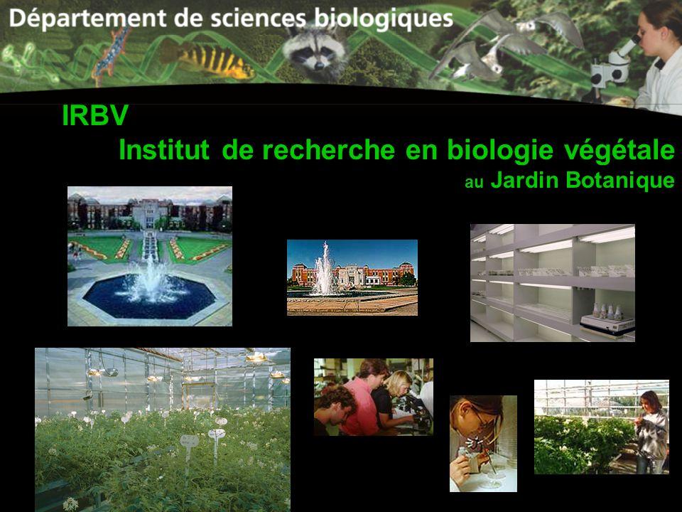IRBV Institut de recherche en biologie végétale au Jardin Botanique
